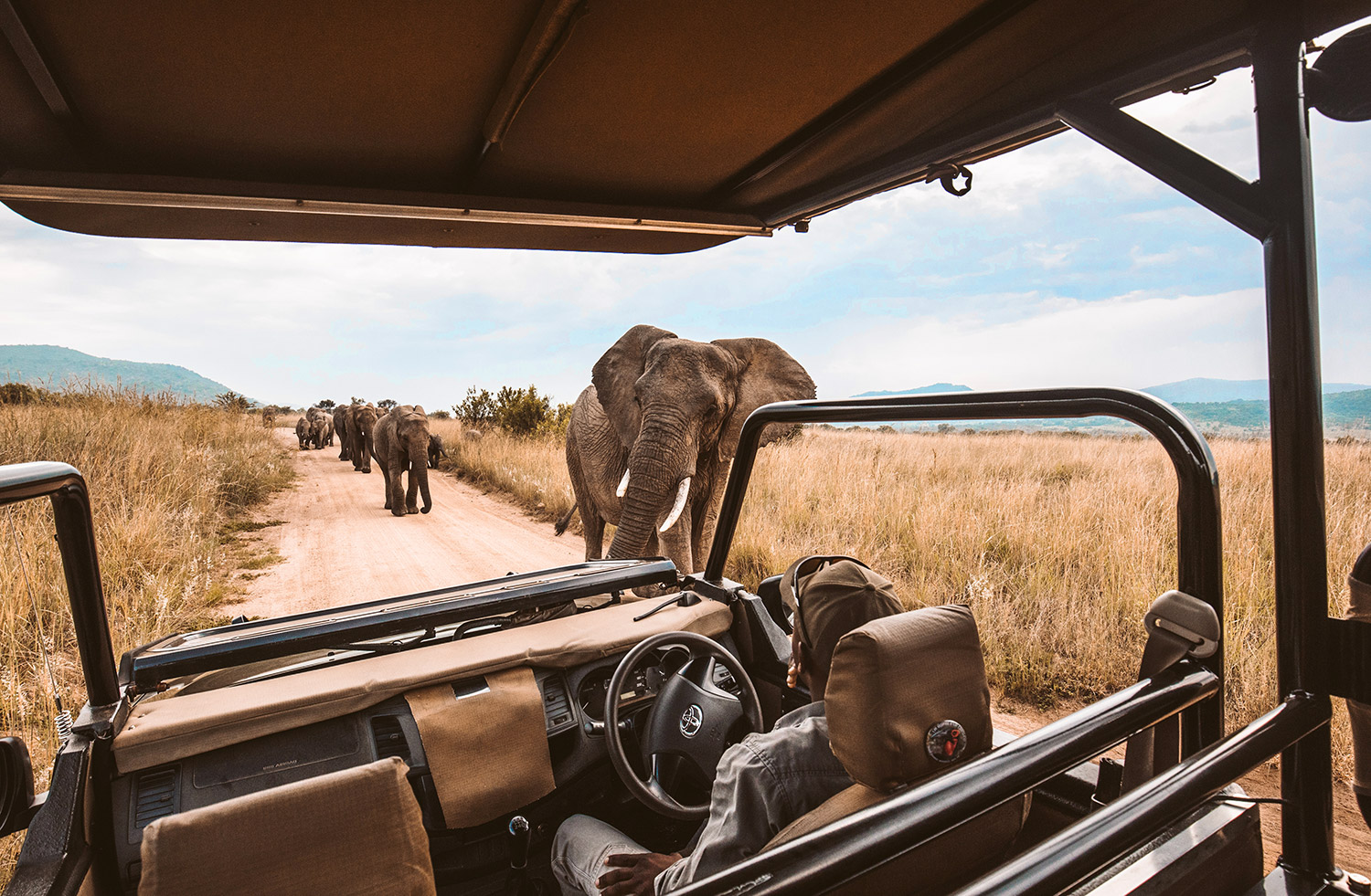 Luxury Travel Adventures African Safari